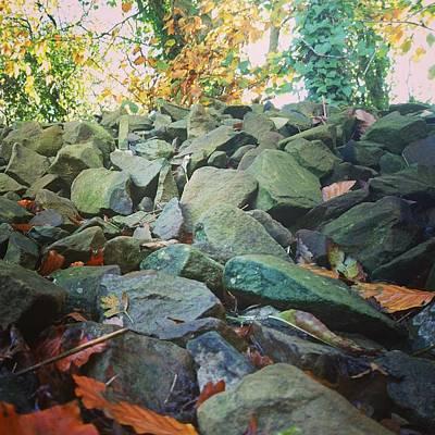 Photograph - Stones by Samuel Pye