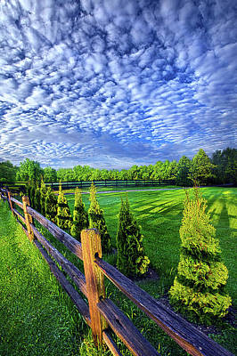 Photograph - Stopped For A Moment by Phil Koch