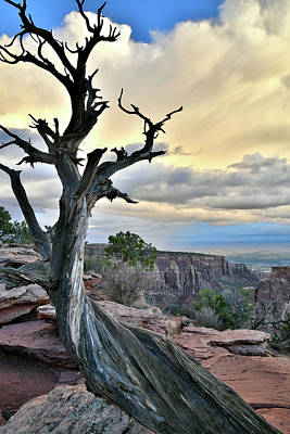 Photograph - Storm Over Colorado National Monument At Sunrise by Ray Mathis