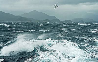 Photograph - Storm Sea by Downunderphotos