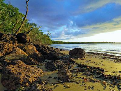 Photograph - Stormy Sky Rocky Beach by Joan Stratton
