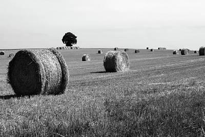 Photograph - Straw Bale Landscape by Aidan Moran