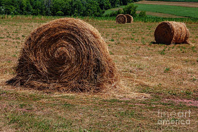 Photograph - Straw Bales by George Sheldon