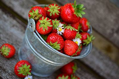 Photograph - Strawberries And Daisies by Top Wallpapers