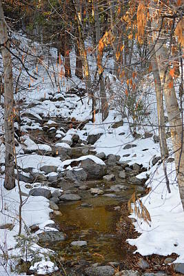 Photograph - Strawberry Creek In Winter - Idyllwild by Glenn McCarthy Art and Photography