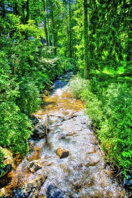 Photograph - Stream In Wv by Jonny D