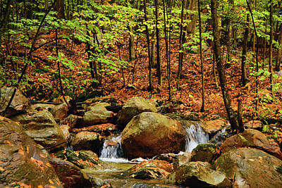 Art Print featuring the photograph Stream Rages In Ma by Raymond Salani III