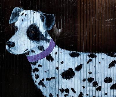 Photograph - Street Art Portrait Of Dalmation  by Robert Ullmann