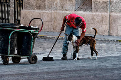 Photograph - Street Dog And Friend by Tom Singleton