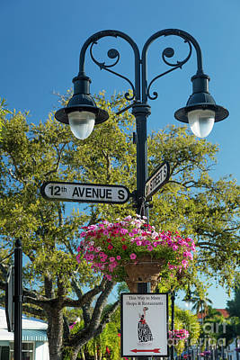 Photograph - Street Signs And Flowers Naples Florida by Brian Jannsen