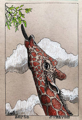 Drawing - Stretch - Giraffe by Linda Apple