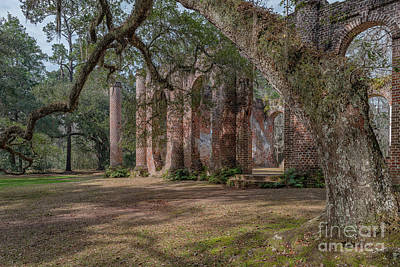 Photograph - Stretching Of Time - Old Sheldon Church Ruins by Dale Powell