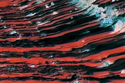 Digital Art - Striations 1 In Red by Ajp