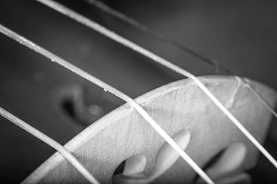 Photograph - Strings Series 27 by David Morefield