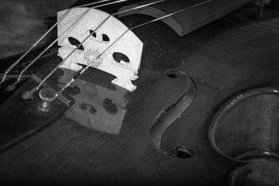 Photograph - Strings Series 37 by David Morefield