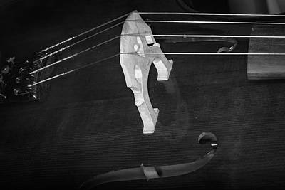 Photograph - Strings Series 42 by David Morefield