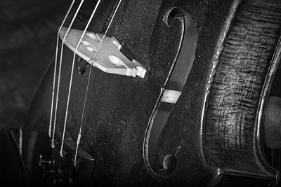 Photograph - Strings Series 46 by David Morefield