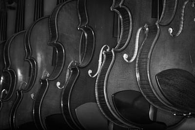 Photograph - Strings Series 51 by David Morefield