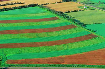 Photograph - Strip Farming, St. Peters, Prince by Barrett & Mackay