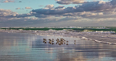 Photograph - Strolling At The Seashore by Debra and Dave Vanderlaan