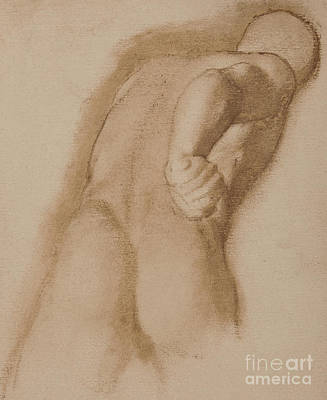 Drawing - Study After Agasias Of Ephesus, Gladiator Borghese by Edgar Degas