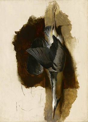 Painting - Study Of A Dead Heron by Edwin Landseer