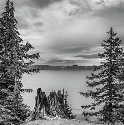 Crater Lake Wall Art - Photograph - Stumped by Joseph Smith