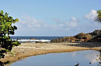Photograph - Stumpy Bay Beach by Climate Change VI - Sales