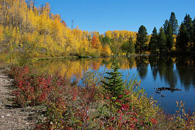 Photograph - Stunning Colorado Autumn Reflected by Cascade Colors