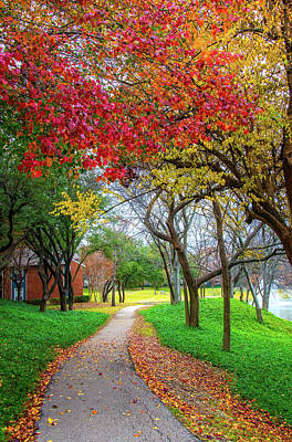 Photograph - Stunning Path To Fall In Dallas by Lynn Bauer