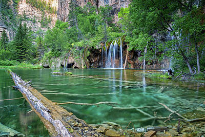 Pastel - Submerged Log, Hanging Lake Colorado by Nathan Bush