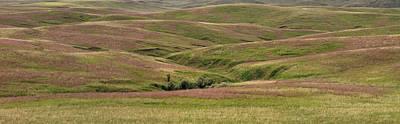 Photograph - Subtle Hills by Leland D Howard