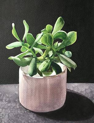 Game Of Chess - Succulent 3 by Deanne Salter