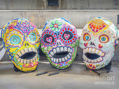 Photograph - Sugar Skulls by Robin Zygelman