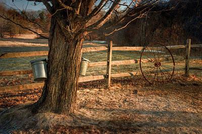 Photograph - Sugaring Season 2 by Thomas Gaitley