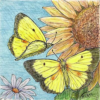 Butterfly On Sunflower 3 Original
