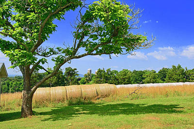 Photograph - Summer Baies Of Rolled Hay by The American Shutterbug Society