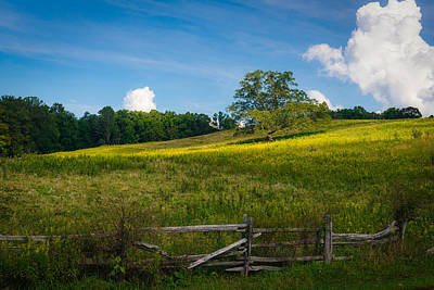 Blue Ridge Parkway - Summer Fields Of Yellow - Lone Tree Art Print