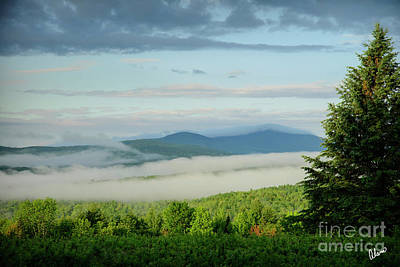 Photograph - Summer Fog by Alana Ranney