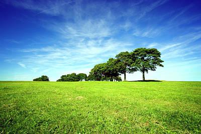 Photograph - Summer Landscape by Duncan1890