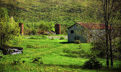 Photograph - Summer On The Farm by Karol Livote