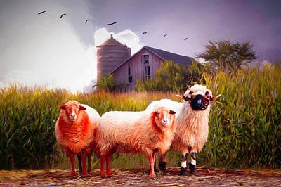 Digital Art - Summer Sheep Painting by Debra and Dave Vanderlaan