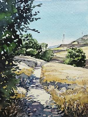 Animal Watercolors Juan Bosco - Summer Stroll - Malibu Creek  by Luisa Millicent