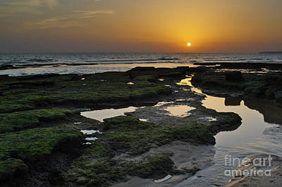 Photograph - Summer Sunsets In Gale Beach by Angelo DeVal