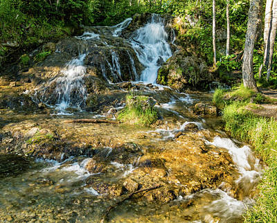 Photograph - Summer Time At The Spring, Big Hill Springs Provincial Recreatio by David Butler