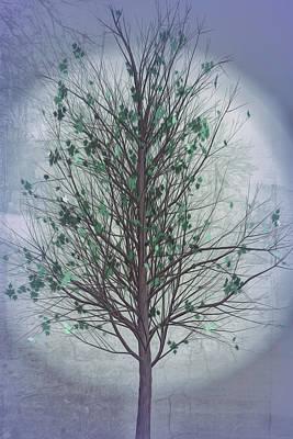 Photograph - Summer Tree In Cool Grays by Debra and Dave Vanderlaan