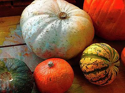 Photograph - Sumptuous Squash by Dorothy Berry-Lound