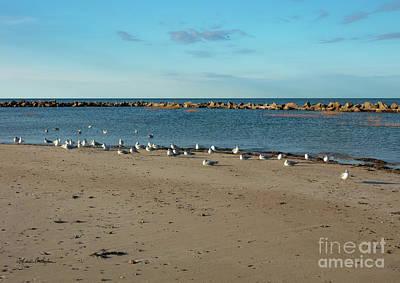 Photograph - Sun Bathers At Corporation Beach Cape Cod by Michelle Constantine