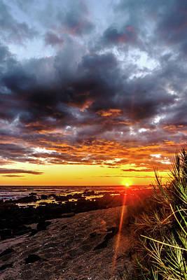 Photograph - Sun Spikes At The Beach by John Bauer