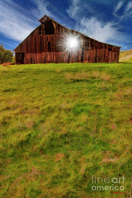 Photograph - Sun Though Vasco Barn Brentwood Ca by Blake Richards